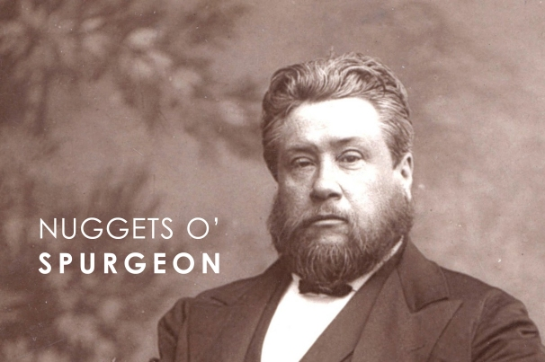 nuggetsospurgeon