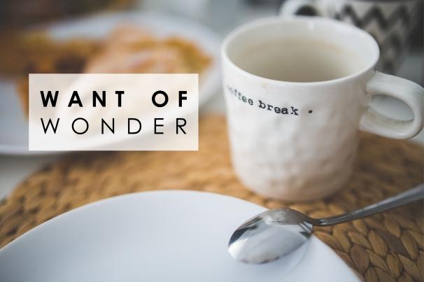 coffeebreak want of wonder.jpg