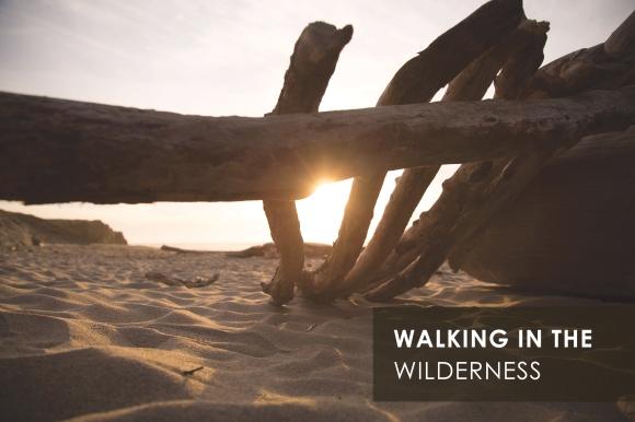 Walking in the wilderness.jpg