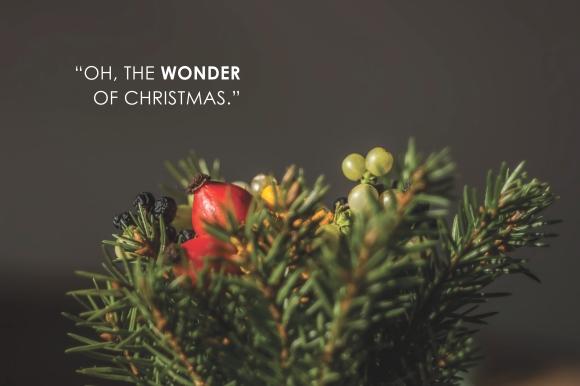 oh the wonder of christmas.jpg