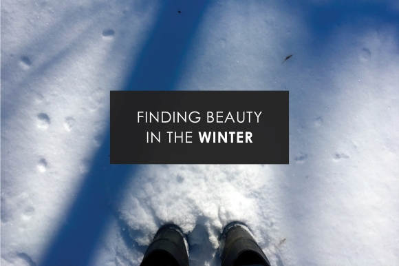 finding beauty in the winter.jpg